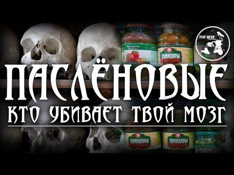 🍅ПАСЛЁНОВЫЕ🍅/ Кто убивает твой мозг?!!!☠️